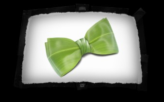 Comp-screen-_0023_20. Corn Leaf Bowtie