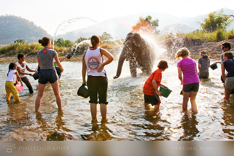 Photography-BYP-elephant-bath