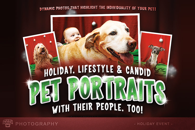 Photography-FITB-holiday-petportraits