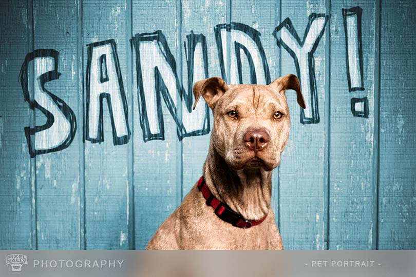 Photography-Sandy-blue-wall